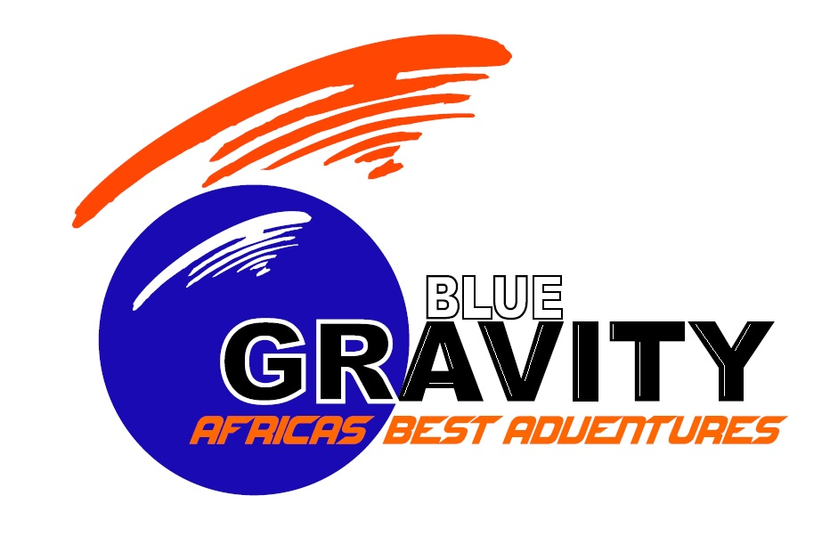 Bluegravity Embroidery Logo